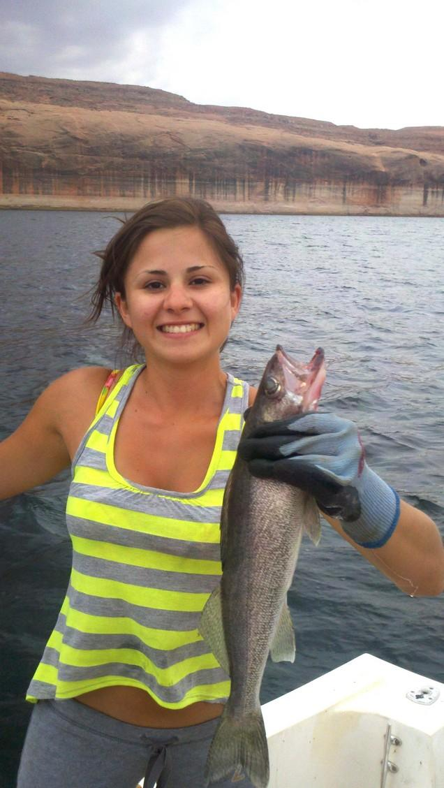 Lake powell fishing report good news all around spring for Az game and fish fishing report