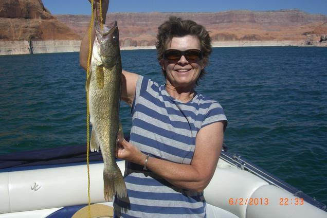 Lake powell fishing report cool weather prevents hot for Lake powell fishing