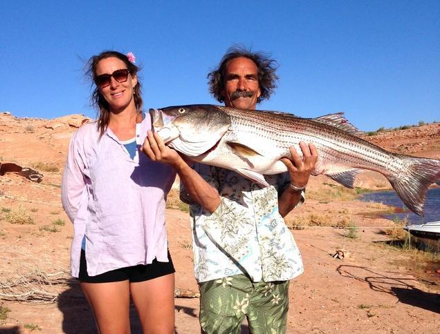 28 pound striper landed at lake powell now salt lake for Lake powell fishing