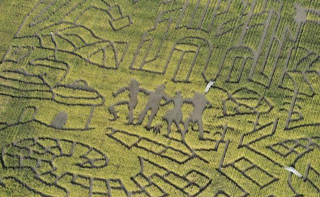 photos corn maze at thanksgiving point pays tribute to the wizard